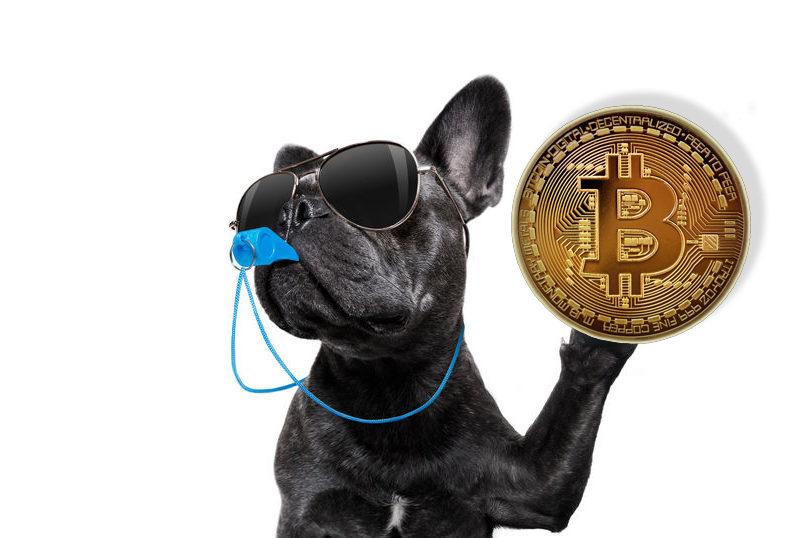 Laatste waarschuwing, koop bitcoin!