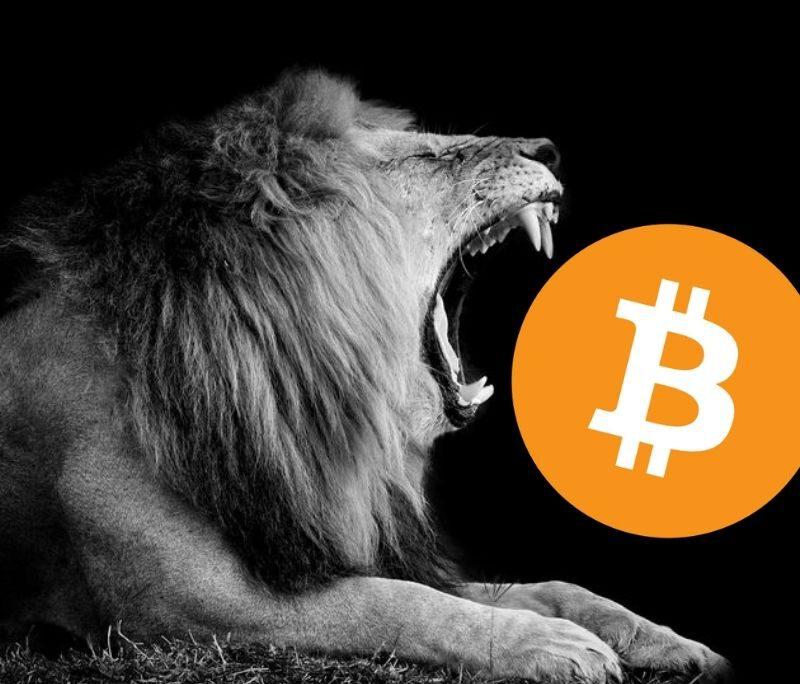 Bitcoin Update: vandaag $33.500 doorbreken betekent groene week!